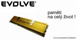 EVOLVEO Zeppelin DDR II 4GB 800 MHz KIT 2x2GB CL6, GOLD